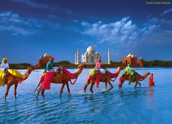 incredible-india_tajm_07